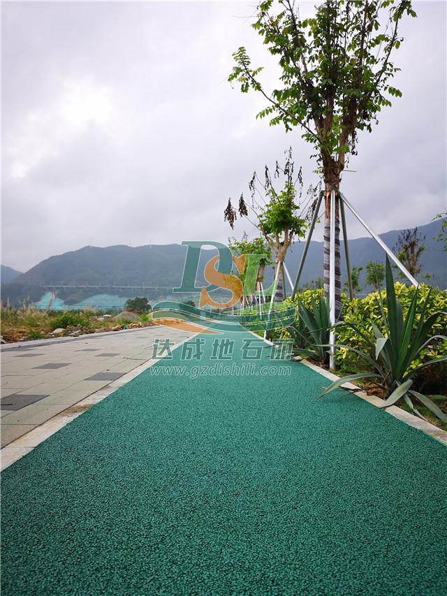 深圳坝光生物谷绿色透水沥青
